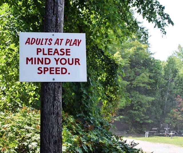 adults at play.jpg